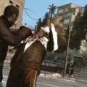Niko Punches Someone | Views: 3969